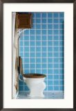 old-fashioned-toilet-fixtures-framed-photographic-print-i12401974.jpeg